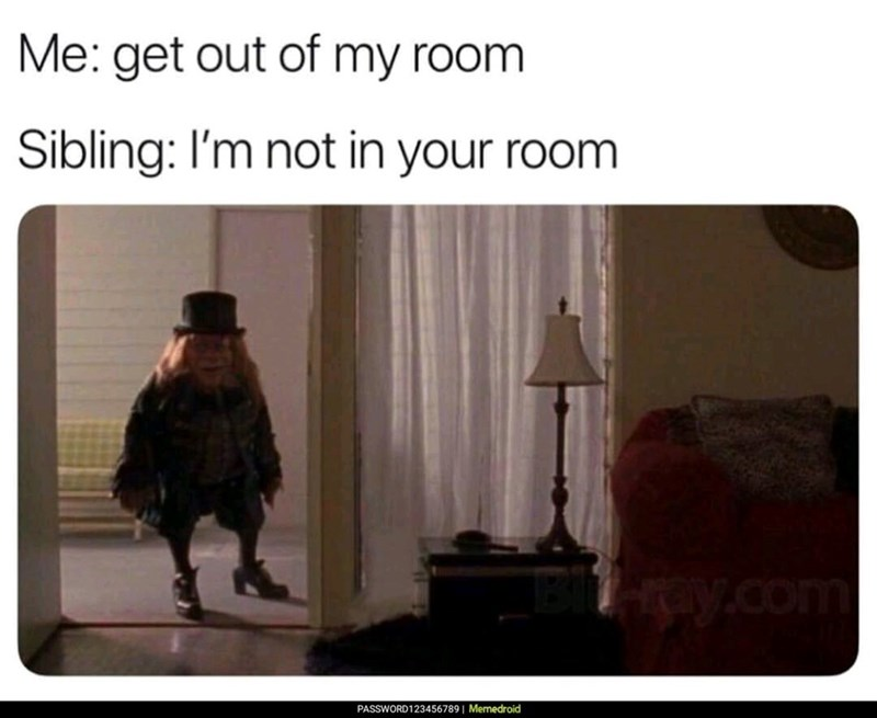 Text - Me: get out of my room Sibling: I'm not in your room Hray.com PASSWORD123456789| Memedroid