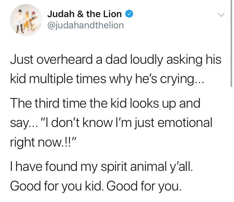 Funny spirit animal meme about emotional child.