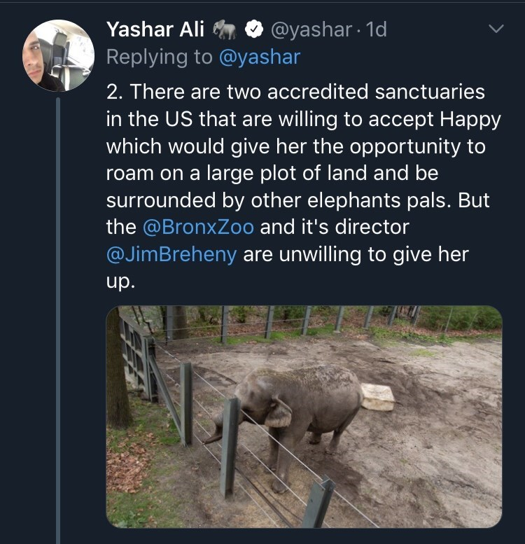 Text - @yashar 1d Yashar Ali Replying to @yashar 2. There are two accredited sanctuaries in the US that are willing to accept Happy which would give her the opportunity to large plot of land and be surrounded by other elephants pals. But the @BronxZoo and it's director @JimBreheny are unwilling to give her roam on a up.
