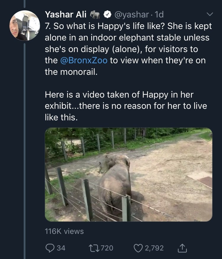 Text - @yashar 1d 7. So what is Happy's life like? She is kept alone in an indoor elephant stable unless she's on display (alone), for visitors to the @BronxZoo to view when they're on Yashar Ali the monorail. Here is a video taken of Happy in her exhibit...there is no reason for her to live like this. 116K views t720 34 2,792