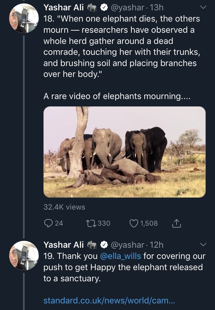 "Wildlife - @yashar 13h 18. ""When one elephant dies, the others Yashar Ali researchers have observed a mourn whole herd gather around a dead comrade, touching her with their trunks, and brushing soil and placing branches over her body."" A rare video of elephants mourning.... 32.4K views 24 t330 1,508 @yashar 12h 19. Thank you @ella_wills for covering our push to get Happy the elephant released Yashar Ali to a sanctuary. standard.co.uk/news/world/cam.."