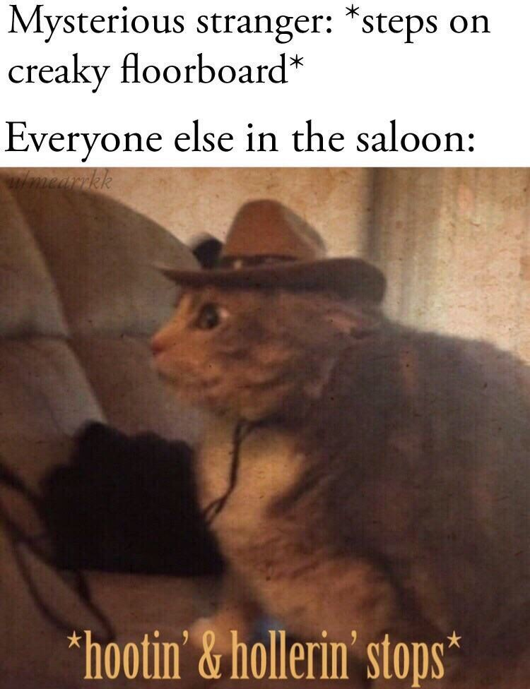 random memes - Photo caption - Mysterious stranger: *steps on creaky floorboard* Everyone else in the saloon: winnearrkk hootin'&hollerin' stops