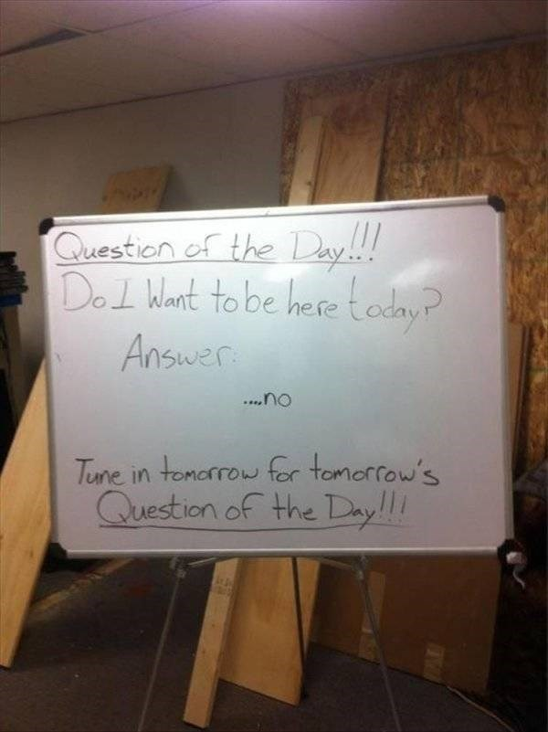 work meme - Text - Question of the Day Del Want to be hese oday Answer ..no Tune in tomarrow fer tomorfow's Question of the Dy