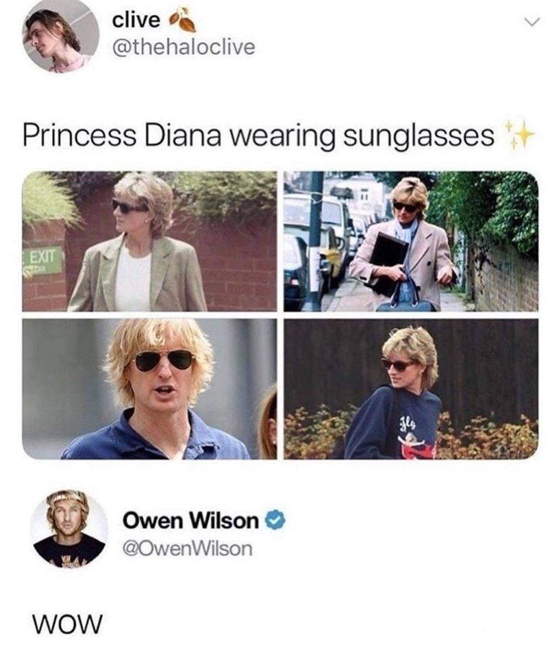 pictures of princess Diana wearing sunglasses with one of them being Owen Wilson
