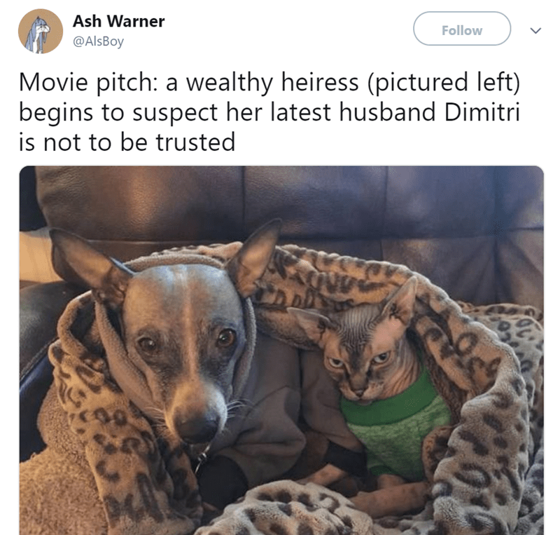 Vertebrate - Ash Warner Follow @AlsBoy Movie pitch: a wealthy heiress (pictured left) begins to suspect her latest husband Dimitri is not to be trusted 00