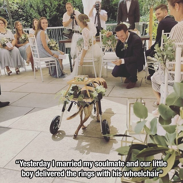 wholesome memes - Product - CYesterday0married mysoulmate and our little boy delivered the rings with his wheelchair