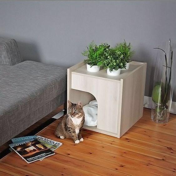 cat house - Room - BATEA