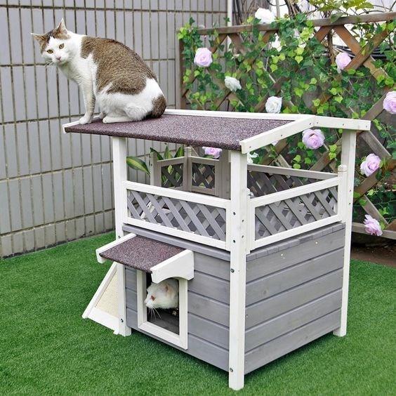 cat house - Cat furniture