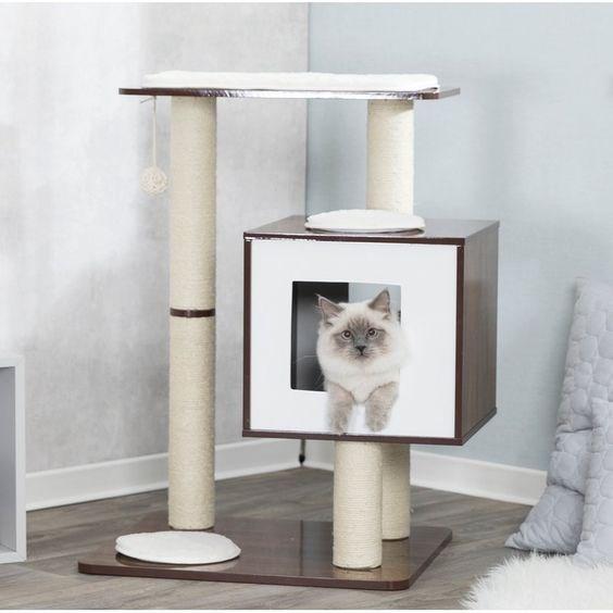 cat house - Cat