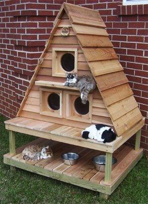 cat house - Birdhouse