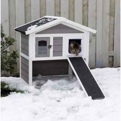 cat house - Snow