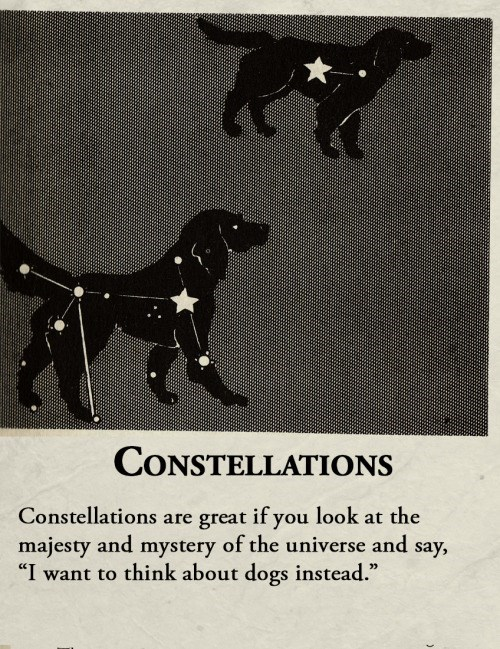 """animal facts - Canidae - CONSTELLATIONS Constellations are great if you look at the majesty and mystery of the universe and say, """"I want to think about dogs instead."""""""