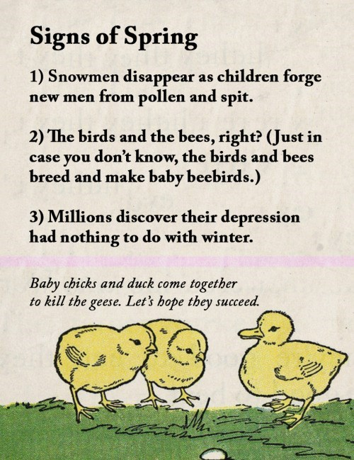 animal facts - Text - Signs of Spring 1) Snowmen disappear as children forge new men from pollen and spit. 2) The birds and the bees, right? (Just in case you don't know, the birds and bees breed and make baby beebirds.) 3) Millions discover their depression had nothing to do with winter. Baby chicks and duck come together to kill the geese. Let's hope they succeed.