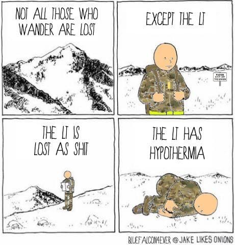 military memes - Cartoon - NOT ALL THOSE WHO WANDER ARE LOST EXCEPT THE IT THE I IS LCST AS SHIT THE IT HAS HYPOIHERMA BILEFALCONAEVER@ JAKE LIKES ONIONS