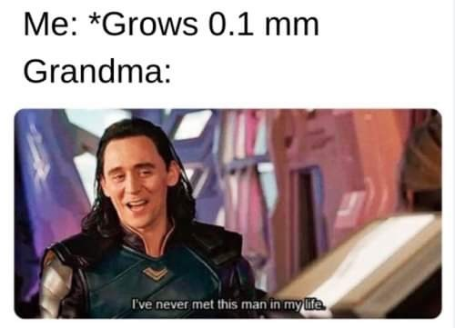 Text - Me: *Grows 0.1 mm Grandma: I've never met this man in my life