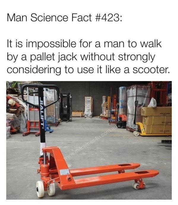 Funny man meme that says, Man science fact #423: it is impossible for a man to walk by a pallet jack without strongly considering to use it like a scooter""