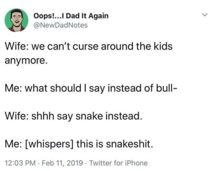 Text - Oops!...I Dad It Again @NewDadNotes Wife: we can't curse around the kids anymore. Me: what should I say instead of bull Wife: shhh say snake instead. Me: [whispers] this is snakeshit. 12:03 PM Feb 11, 2019 Twitter for iPhone >