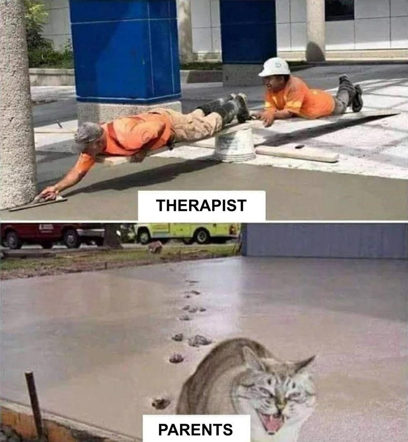cat meme about parents vs therapists and a kitty walking on wet cement concrete