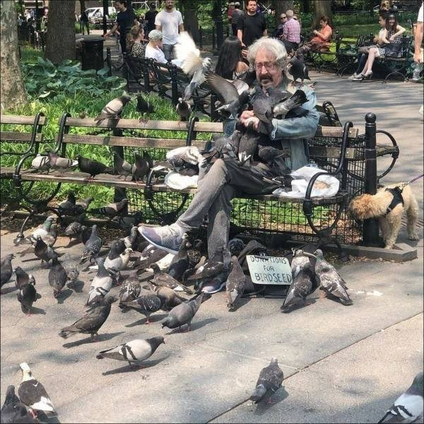 Iron - DON KHONS FOR BIRDSEED