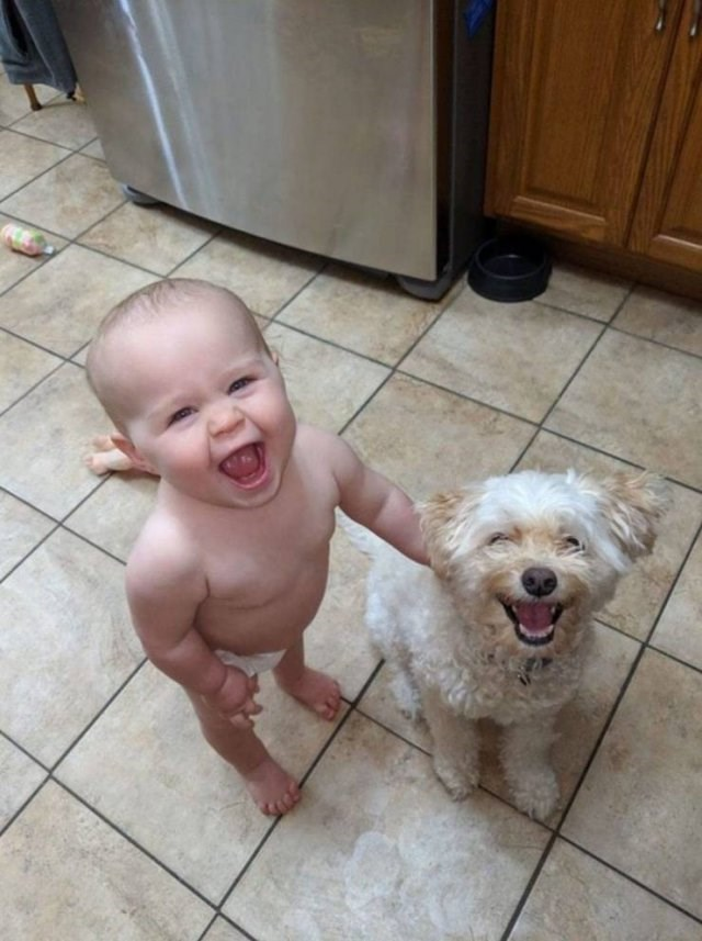 Dog and child smiling