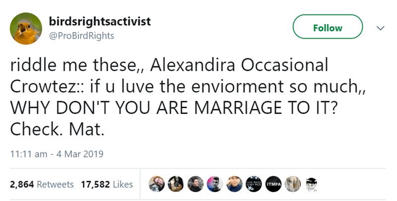 bird tweet - Text - birdsrightsactivist @ProBirdRights Follow riddle me these,, Alexandira Occasional Crowtez: if u luve the enviorment so much,, WHY DON'T YOU ARE MARRIAGE TO IT? Check. Mat. 11:11 am - 4 Mar 2019 2,864 Retweets 17,582 Likes ITMFA