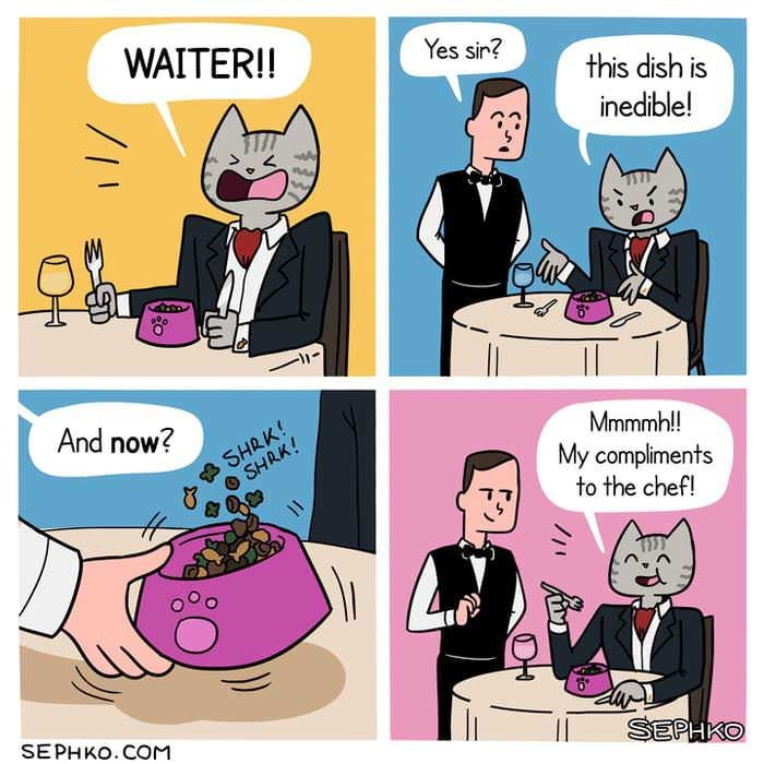 wholesome meme - Cartoon - WAITER!! Yes sir? this dish is inedible! And now? SHRK! SHRK! Mmmmh!! My compliments to the chef! SEPHKO.COM SEPHKO