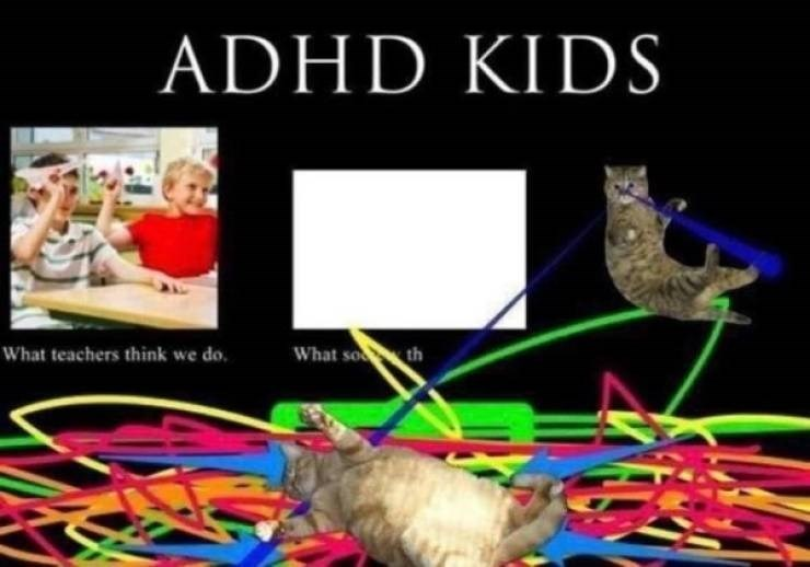 funny pics - Organism - ADHD KIDS What so th What teachers think we do.
