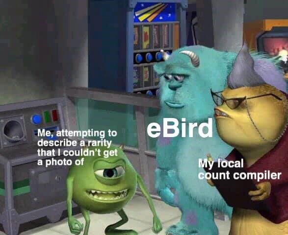 dank - Cartoon - CLI Me, attempting to describe a rarity that I couldn't get a photo of eBird My local count compiler