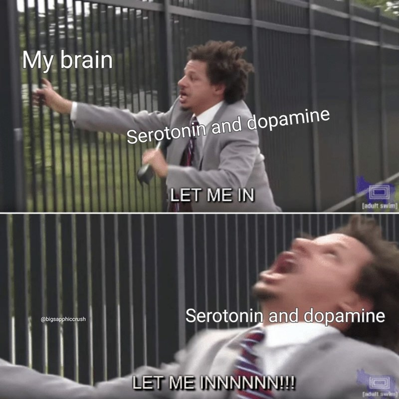 sad spicy memes - Product - My brain Serotonin and dopamine LET ME IN adult swim Serotonin and dopamine @bigsapphiccrush LET ME INNNNNN!!! dult awh