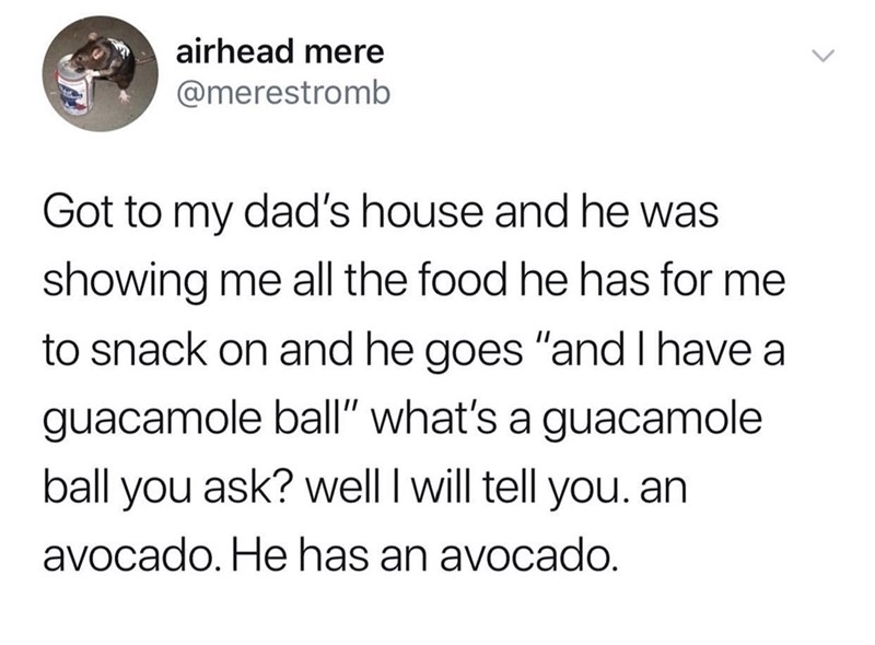 "Text - airhead mere @merestromb Got to my dad's house and he was showing me all the food he has for me to snack on and he goes ""and I have a guacamole ball"" what's a guacamole ball you ask? well I will tell you. an avocado. He has an avocado."