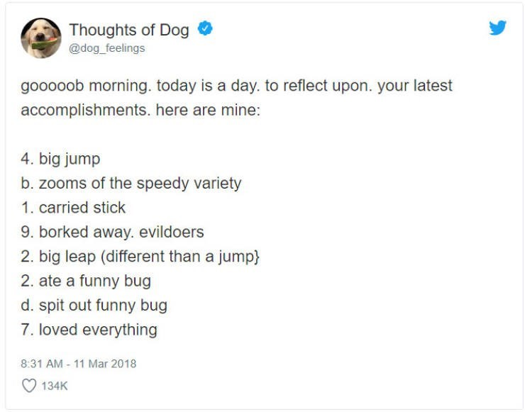 Text - Thoughts of Dog @dog feelings gooooob morning. today is a day. to reflect upon. your latest accomplishments. here are mine: 4. big jump b. zooms of the speedy variety 1. carried stick 9. borked away. evildoers 2. big leap (different than a jump) 2. ate a funny bug d. spit out funny bug 7.loved everything 8:31 AM - 11 Mar 2018 134K