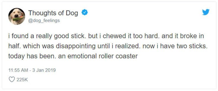 """Funny tweet from 'Thoughts of Dog' that reads, """" i found a really good stick. but i chewed it too hard. and it broke in half. which was disappointing until i realized. now i have two sticks. today has been. an emotional roller coaster"""""""