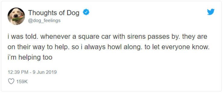 Text - Thoughts of Dog @dog_feelings i was told. whenever a square car with sirens passes by. they are on their way to help. so i always howl along. to let everyone know. i'm helping too 12:39 PM-9 Jun 2019 159K