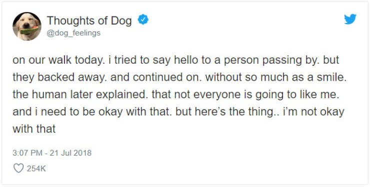 Text - Thoughts of Dog @dog_feelings on our walk today. i tried to say hello to a person passing by. but they backed away. and continued on. without so much as a smile. the human later explained. that not everyone is going to like me. and i need to be okay with that. but here's the thing. i'm not okay with that 3:07 PM-21 Jul 2018 254K