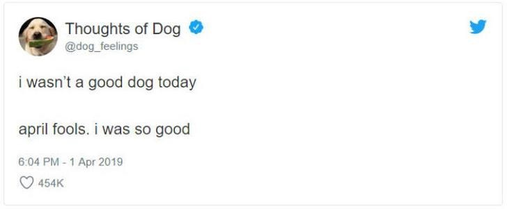 Text - Thoughts of Dog @dog_feelings i wasn't a good dog today april fools. i was so good 6:04 PM-1 Apr 2019 454K