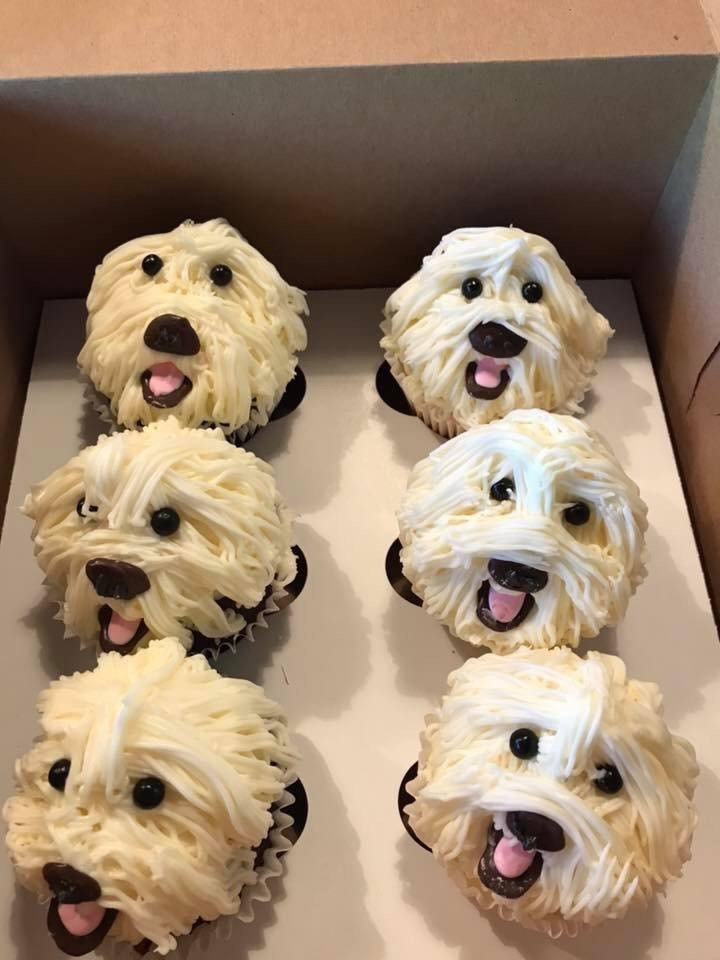 dogs cute pupcakes cupcakes - 9317711616