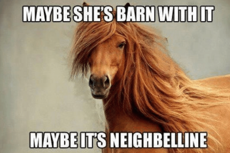 Horse - MAYBESHE'S BARN WITH IT MAYBE ITS NEIGHBELLINE