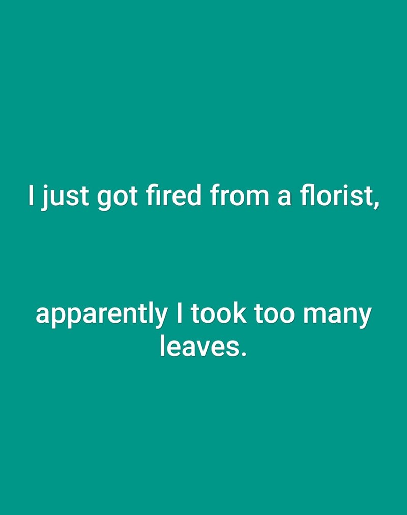 Text - I just got fired from a florist, apparently I took too many leaves.