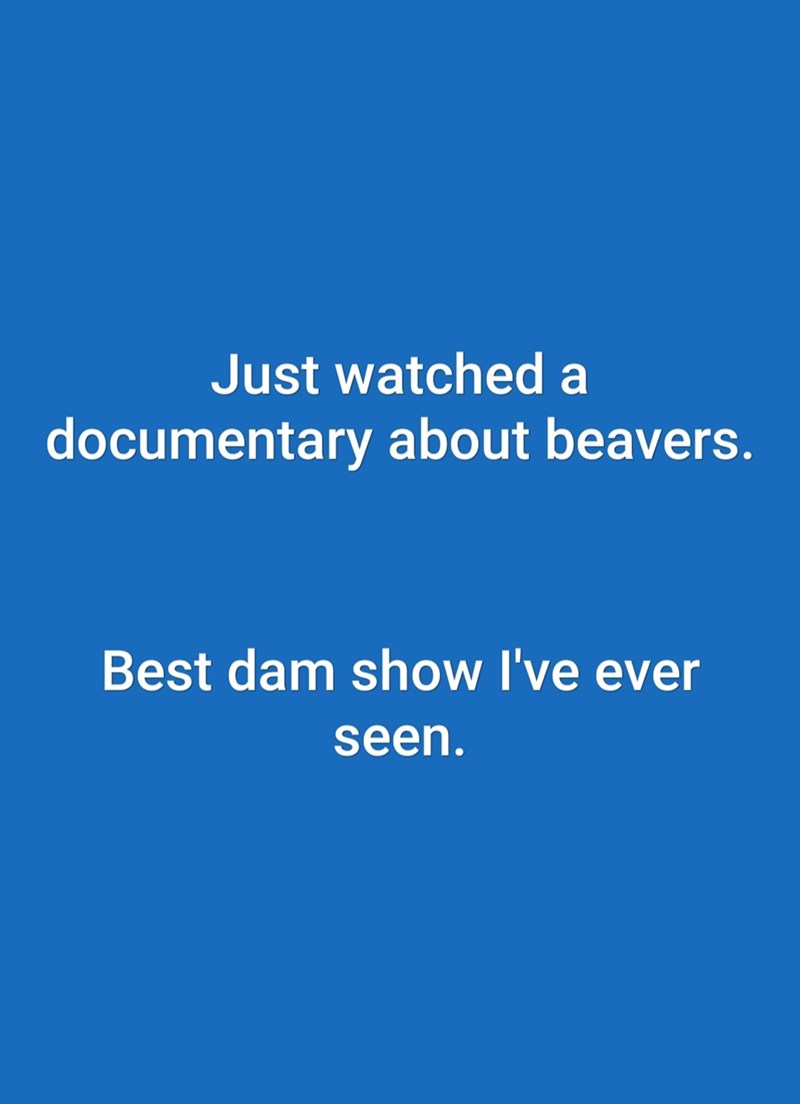Text - Just watched a documentary about beavers. Best dam show I've ever seen.