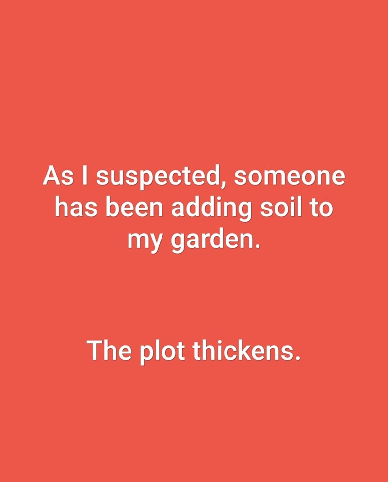 Text - As I suspected, someone has been adding soil to my garden. The plot thickens.