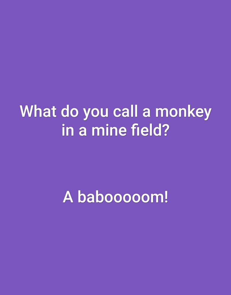 Text - What do you call a monkey in a mine field? A babooooom!