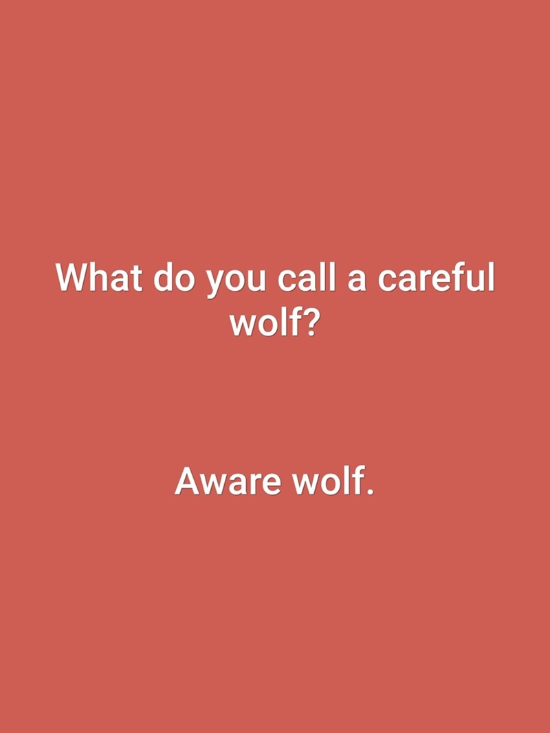 dad joke - Text - What do you call a careful wolf? Aware wolf.