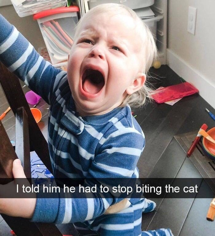 kid tantrums - Child - I told him he had to stop biting the cat