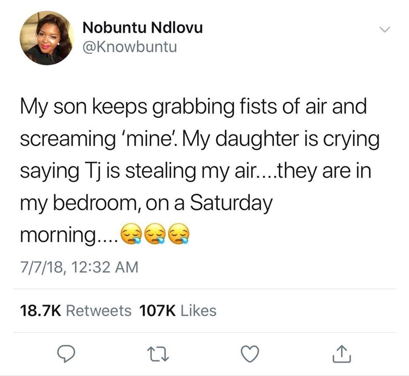 a funny tweet from a parent describing their kids fighting over air