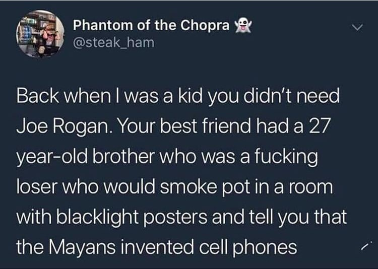 Text - Phantom of the Chopra @steak_ham Back when I was a kid you didn't need Joe Rogan. Your best friend had a 27 year-old brother who was a fucking loser who would smoke pot in a room with blacklight posters and tell you that the Mayans invented cell phones