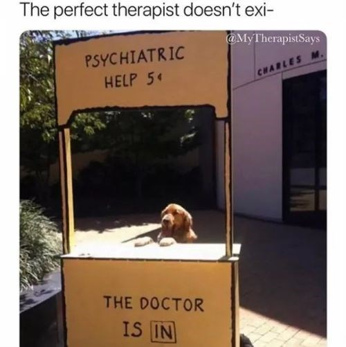 Text - The perfect therapist doesn't exi- @MyTherapistSays PSYCHIATRIC HELP 5 CHARLES M. THE DOCTOR IS IN
