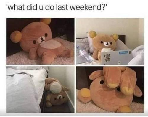 Teddy bear - 'what did u do last weekend? HE