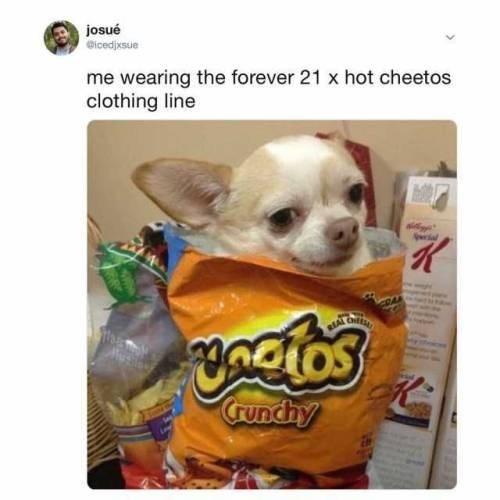 Dog - josué Gicedjxsue me wearing the forever 21 x hot cheetos clothing line Uncios Counchy