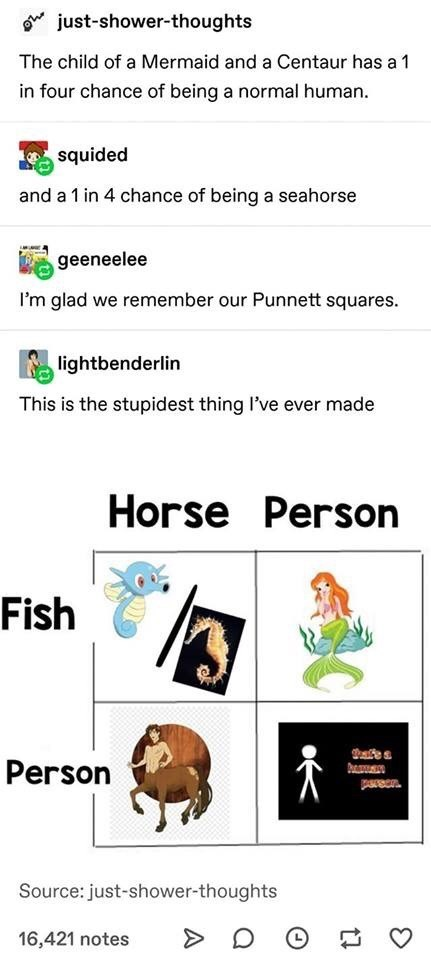 tumblr centaur funny mermaid funny tumblr - 9318494720