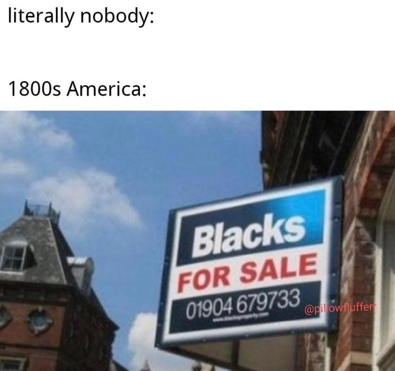 dank history memes - Sky - literally nobody: 1800s America: Blacks FOR SALE 01904 679733 @pilowfluffer
